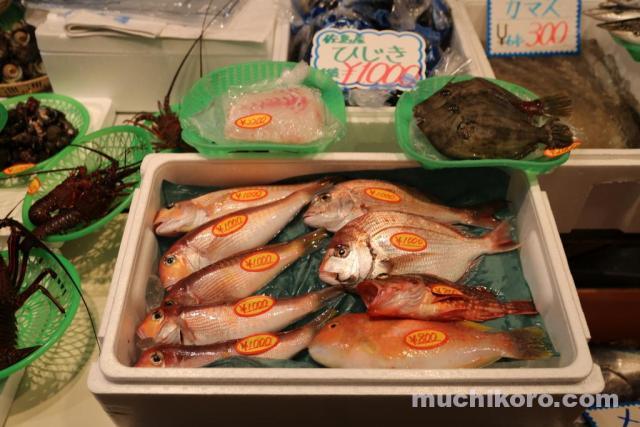 三崎朝市 鮮魚