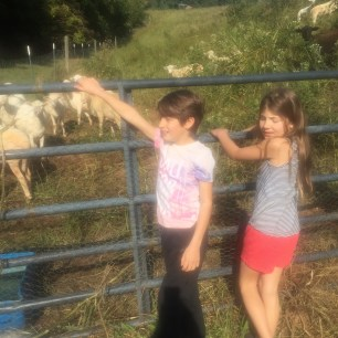 Markus amd Micaela with the sheep