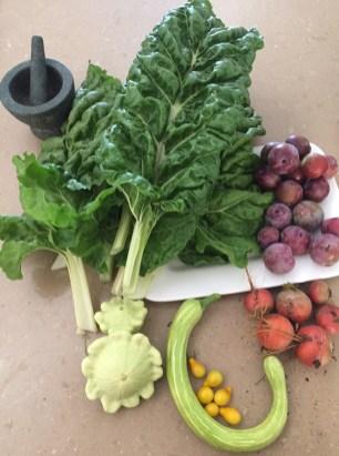 Summer veg harvest