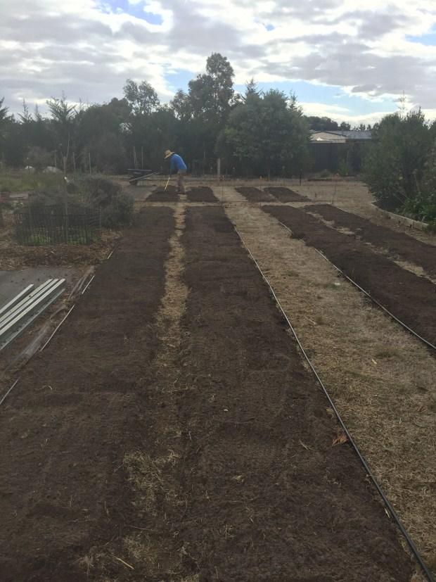 Veg - topsoil