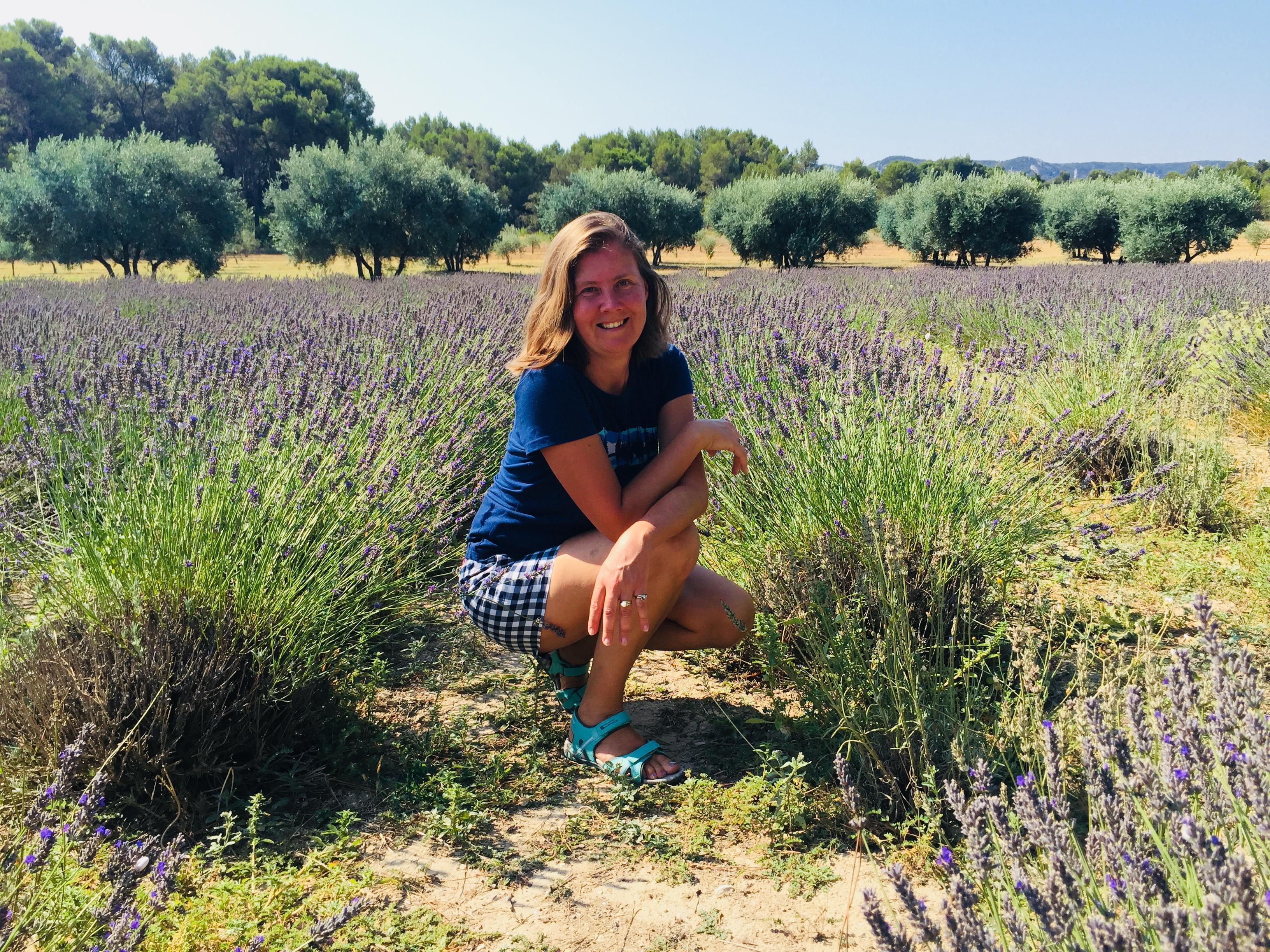LM Patricia lavender