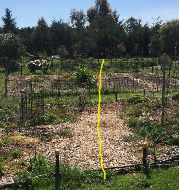 sfix-irrigation-split.jpg