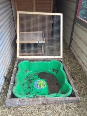 Coop hygiene - duck lid open