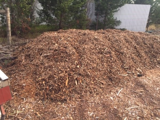 Compost - mulch while were at it