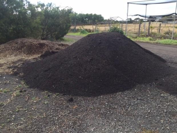 Compost - new at homeland
