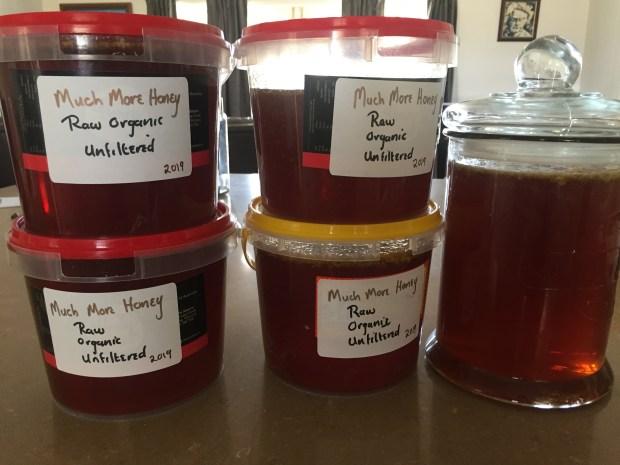 Honey - harvest