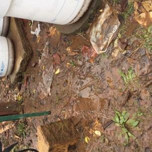 Pour - wet feeding area