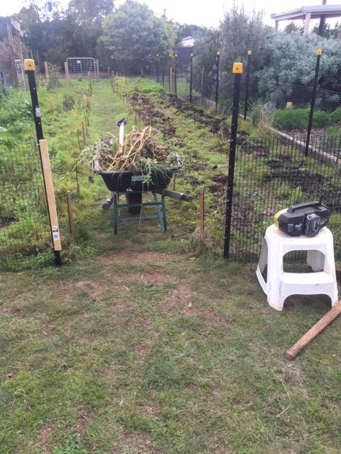 Rabbit – market garden fence