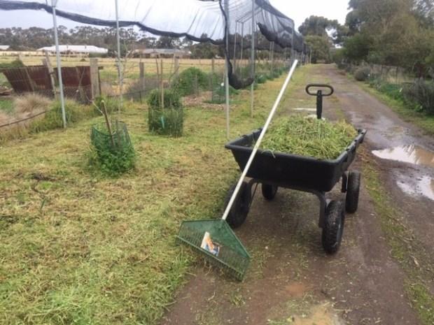 Driveway 0 - compost fodder