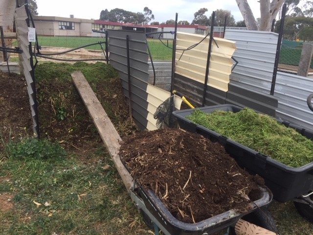 Bee food – grass compost