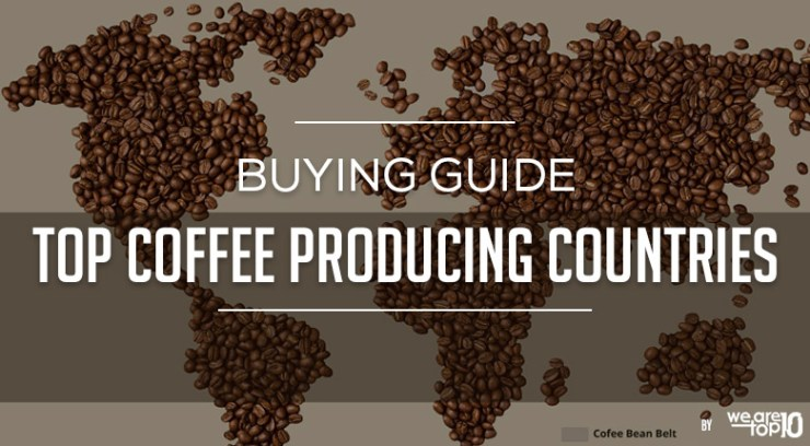 Buying Guide Top Coffee Producing Countries