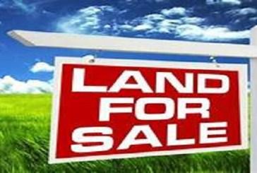 Plot For Sale, Location: Akarere: Rulindo, Umurenge:Masoro, Akagali:Shengampuli, Price:3,500,000frw