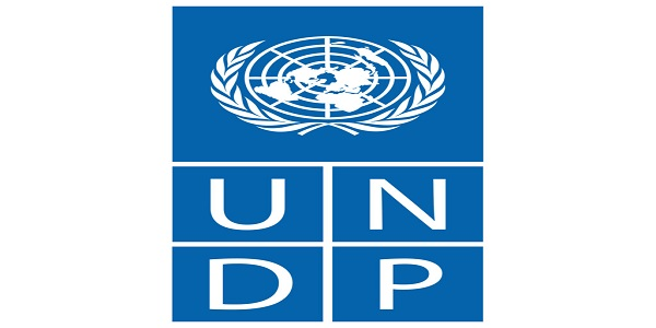 Gender Fellow at the REGIONAL OFFICE FOR CENTRAL AFRICA OF THE HIGH COMMISSIONER FOR HUMAN RIGHTS (Exclusively reserved for candidates from the following countries: Congo, Gabon, Equatorial Guinea, Sao-Tome and Principe, Chad, Rwanda, DRC, RCA) at United Nations Development Program (UNDP): (Deadline 4 July 2021)
