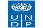 UNDP 2021-2022 African Young Women Leaders Fellowship Programme: (Deadline 14 September 2021)