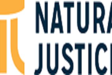 Natural Justice 2021 African Environmental Defenders Fellowship: (Deadline 24 September 2021)