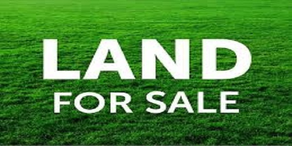 Land for Sale; Location; Rwamagana, Hectare on best Price: 6,000,000frw.
