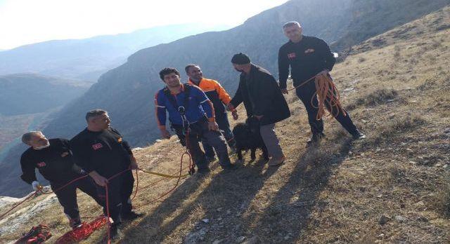 Siirt'te mahsur kalan keçiyi AFAD kurtardı