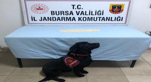 Bursa Orhangazi'de uyuşturucu operasyonu