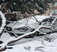 Bursa'da kar yükünü kaldıramayan ağaç otomobilin üstüne devrildi (ÖZEL HABER)