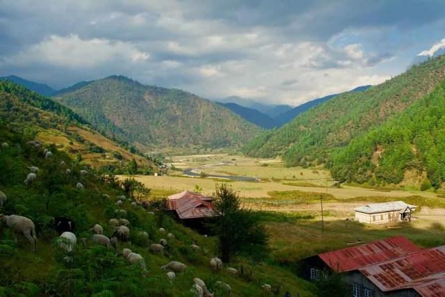 Sheep Farm, Sangti Dirang Tawang Muddie Trails
