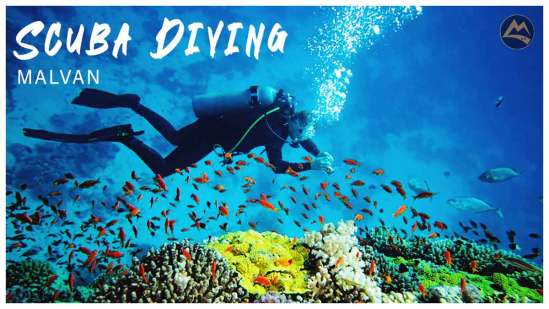 Scuba Diving Malvan
