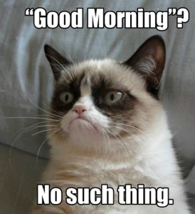grumpy-cat-meme-good-morning-no-such-thing