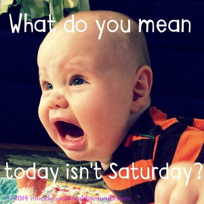 Not Saturday Meme
