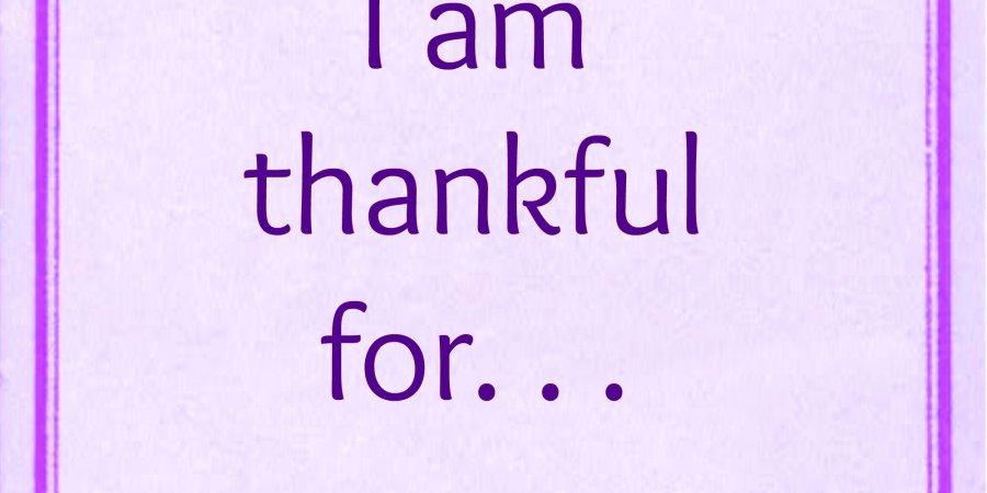 November Thankfulness Challenge Meme via MuddyBootsandDiamonds.com