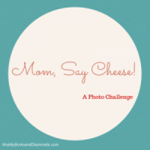 Mom Say Cheese Photography Challenge