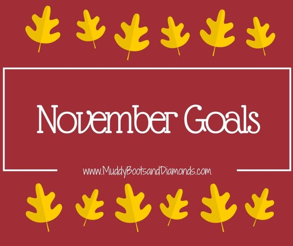 November Goals MuddyBootsandDiamonds.com