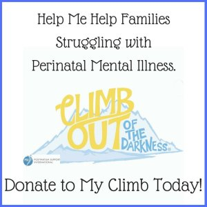 Donate to My Climb Out of the Darkness Fundraiser via muddybootsanddiamonds.com