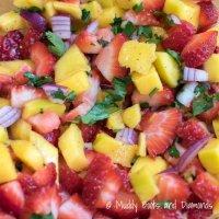Strawberry-Mango-Salsa-via-Muddy-Boots-and-Diamonds