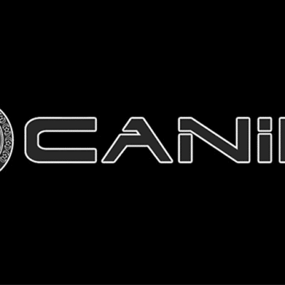 Canik Holsters