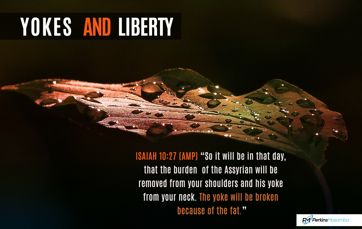 yokes and liberty