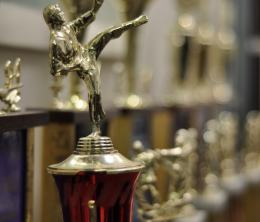 Karate Tournament Trophies with Bokeh