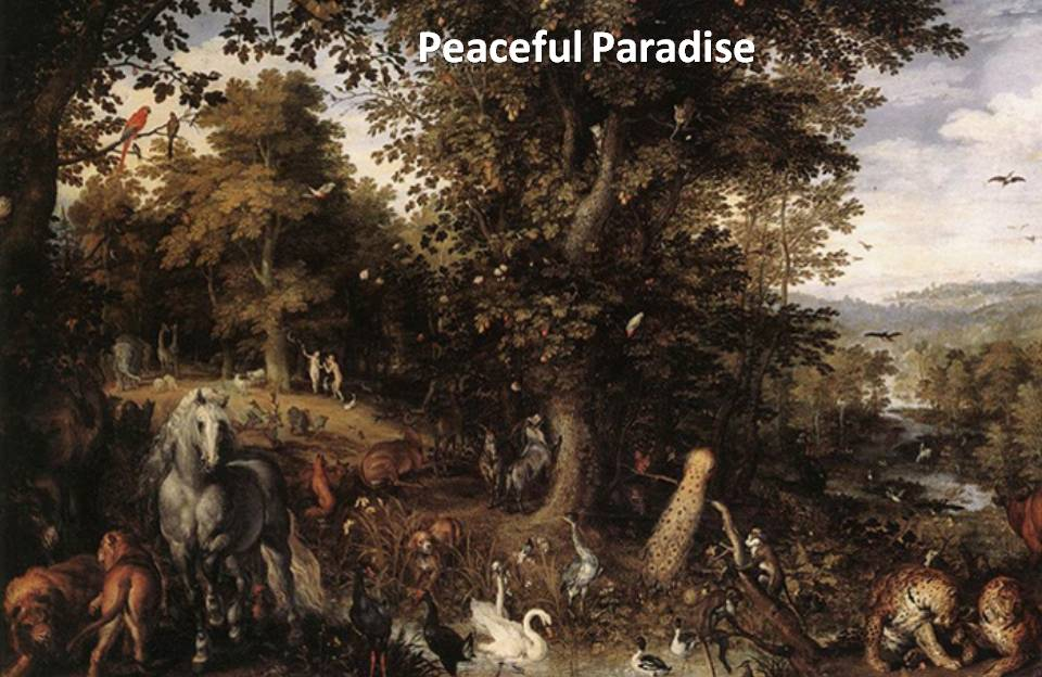 paradise-of-peace