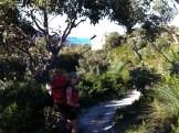 Into Waterloo Bay