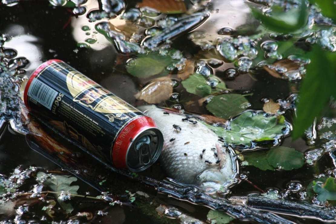 Природа не может больше переработать обилие мусора