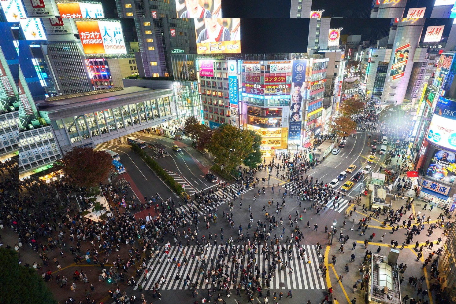 This image has an empty alt attribute; its file name is shibuya3.jpg