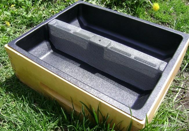 Plastic insert feeder in a medium super (June 1, 2011).