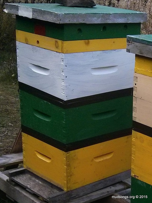 With any luck, I shouldn't have to do anything with this hive until next April.