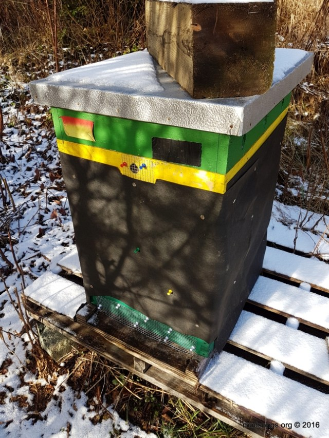 I can see now that this hive gets enough sunlight in the morning (this photo was taken around 10:30am on December 1st, 2016).  It also gets more sunlight at the very end of the day.  I'm not too concerned now.