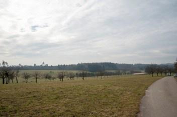 baumschnittkurs_nordschwaben_20140201-DSC_3640