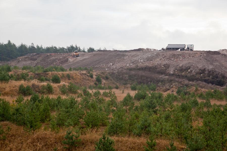 Lindower Heide: Der Hauptangeklagte setzte sich ins Ausland ab