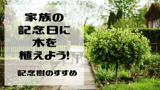 家族の記念日に記念樹