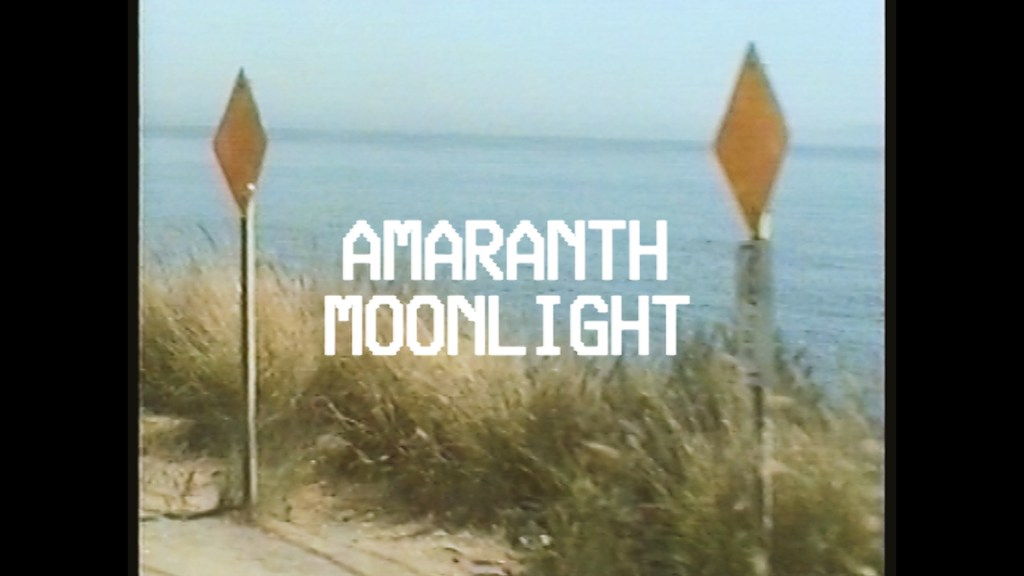 Old Sea Brigade & Luke Sital-Singh - Amaranth Moonlight (Official Music Video)