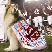 University Sells Ad Space on Reveille's Shawl