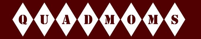qm-logo-wide