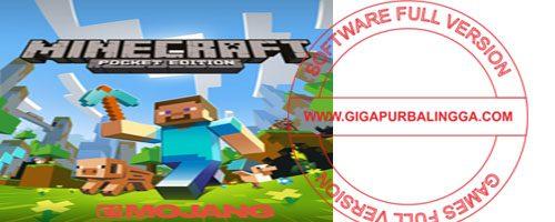 minecraft-9790705