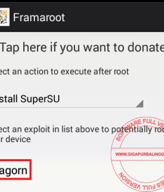 root2-4954024